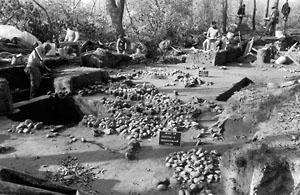 Excavation at Abbott Farm